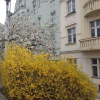 Весенняя Прага. Апрель 2016 г.