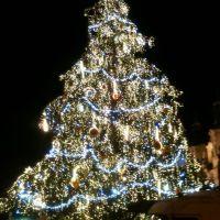 Главная елка страны на Староместской площади