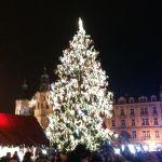 Рождественская елка на Староместской площади 2014